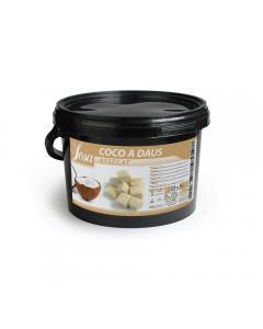 Dés de noix de coco séchés