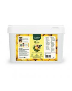 Citron femminello en purée 5kg